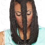 Eloms - African-Hair-Braiding-Senegalese-Twists